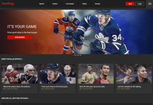 Bodog Sportbook Review
